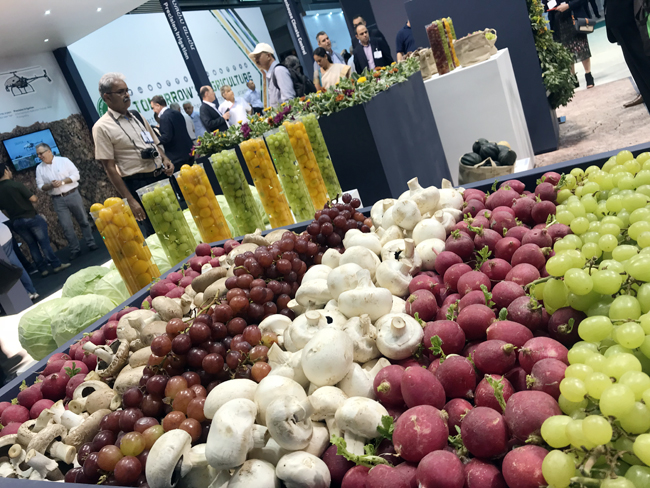 Desert agriculture successful in Israel - Agritech 2018