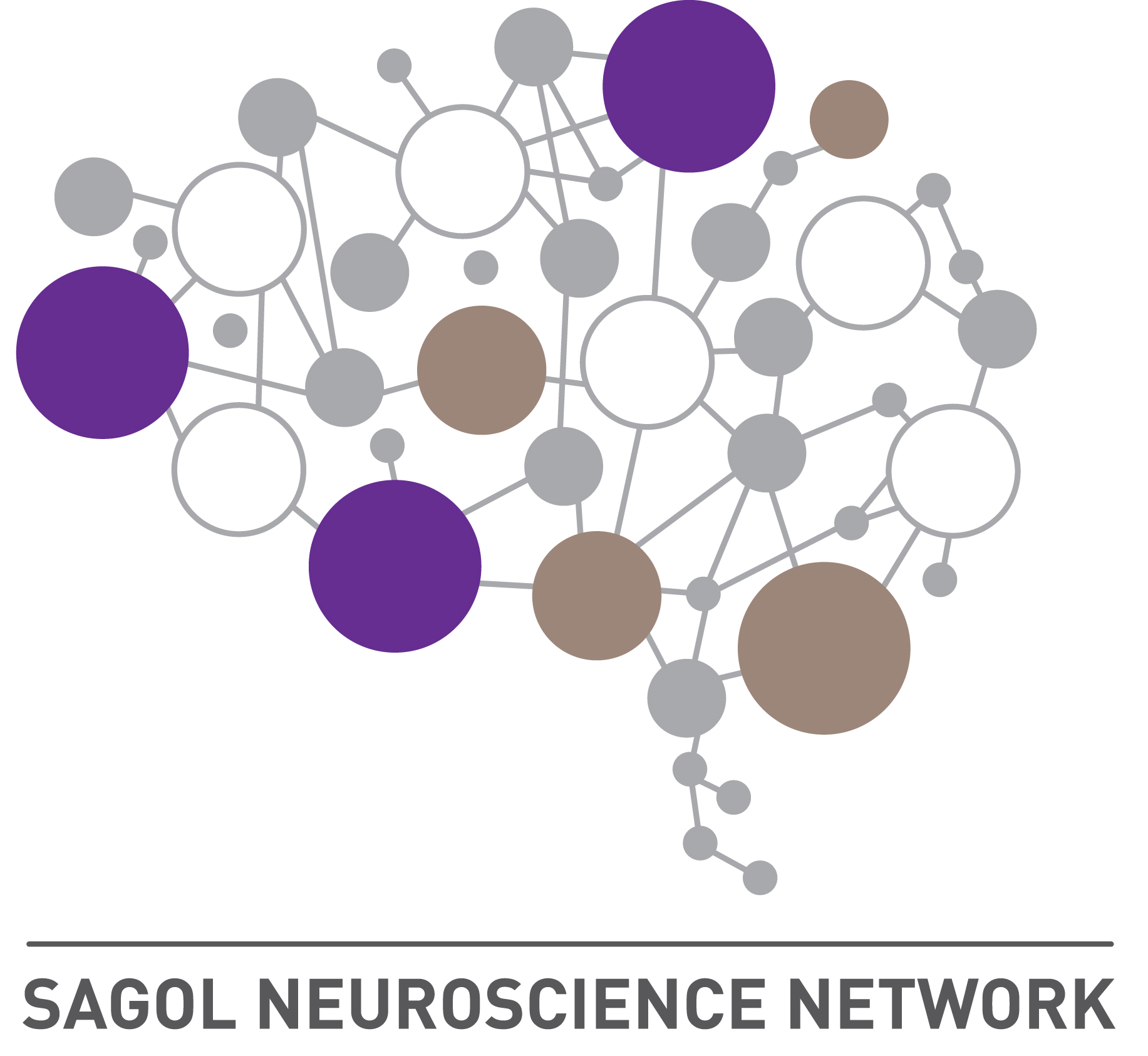 Sagol Neuroscience Network